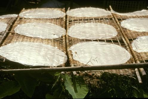 tørrede risplader