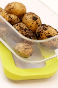 kartofler.nye