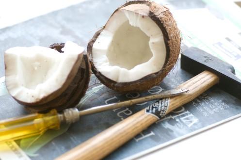 kokosnød.1