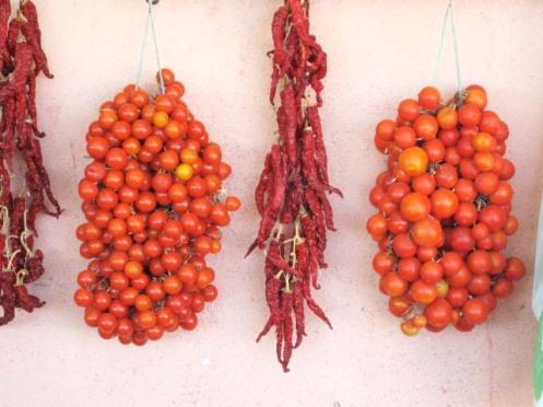 tomater og chili.tørret.1