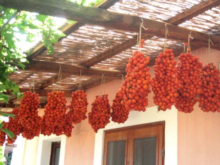 tomater.tørrede.2