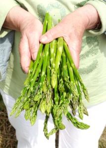 asparges grønne i h
