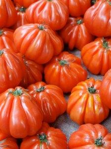 tomater bøf London