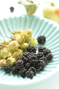 brombær og nødder