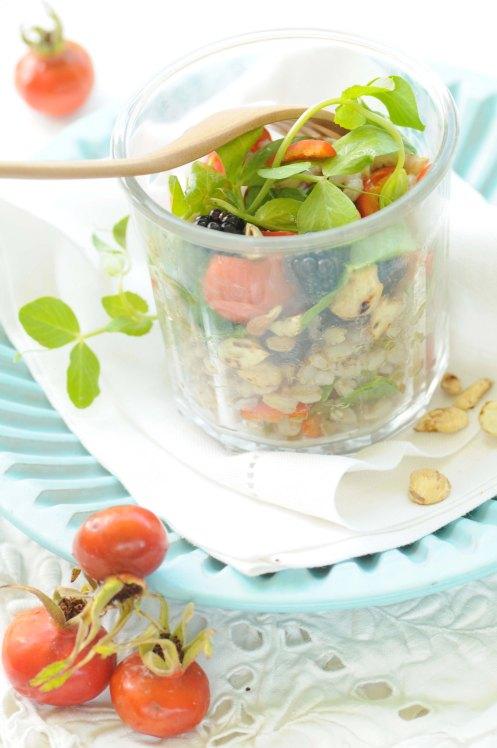 salat af perlebyg brombær hyben 2