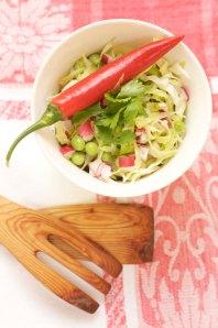 spidskålssalat m chili og koriander