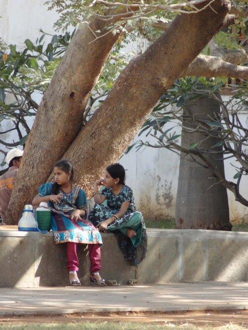 Hyderabad.ro v træet