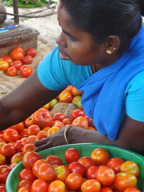 Indien.kvinde.19