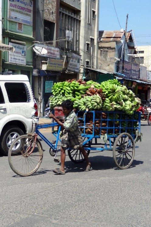 Madurai.banancykel