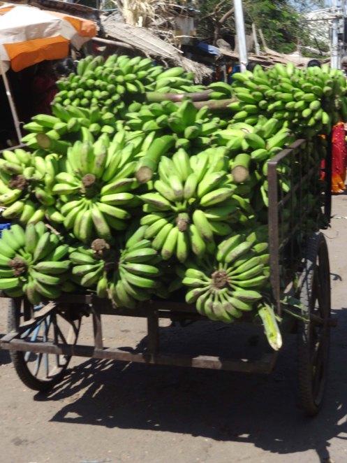 Madurai.bananvogn