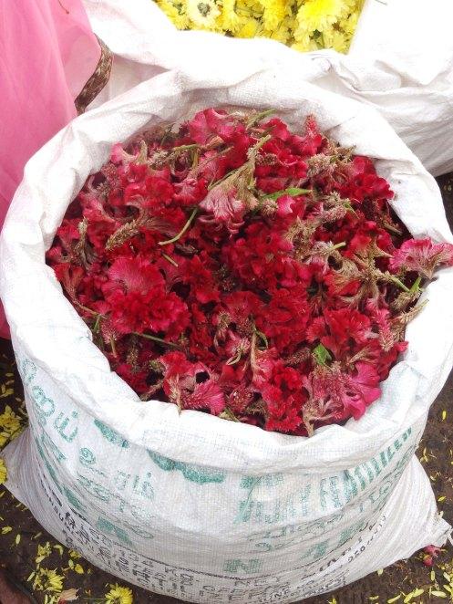 Madurai.blomstermarked røde b