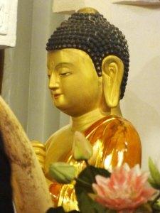 Sri lanka.buddha