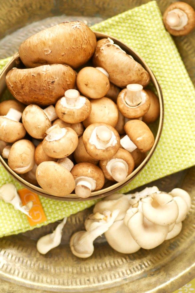 champignon.østershatte