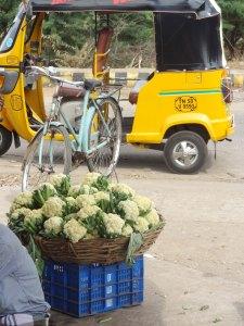 indien.blomkål.2