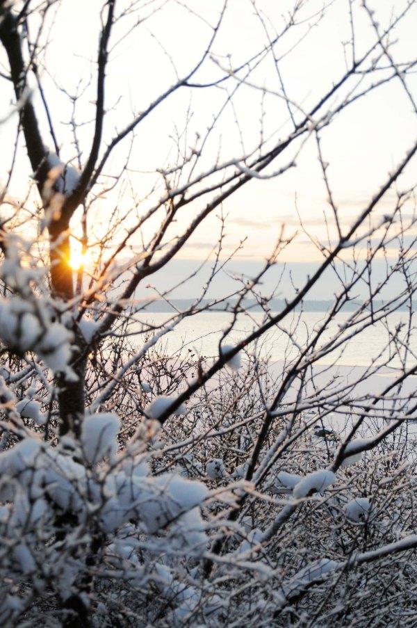 Kregme.sne.3