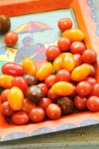 tomater bakke
