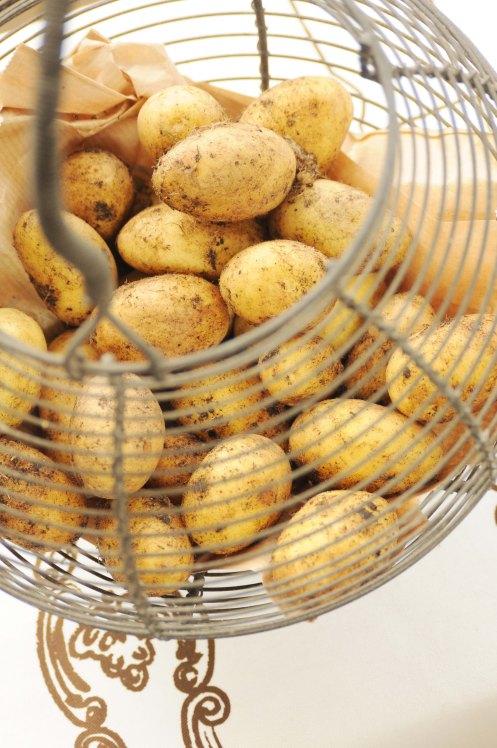 kartofler i metalkurv