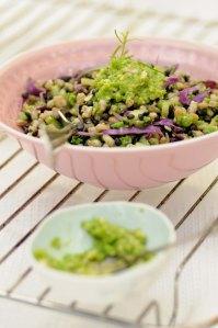 perlebyg.linsesalat.1