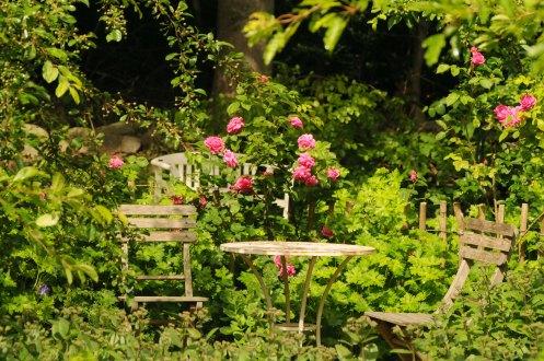 rosenhave