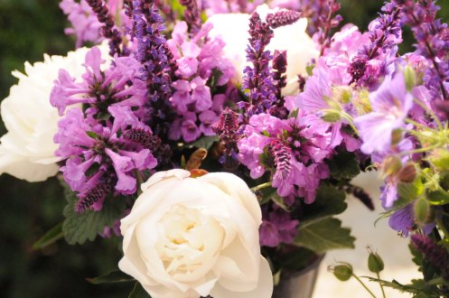 Samsø.blomster