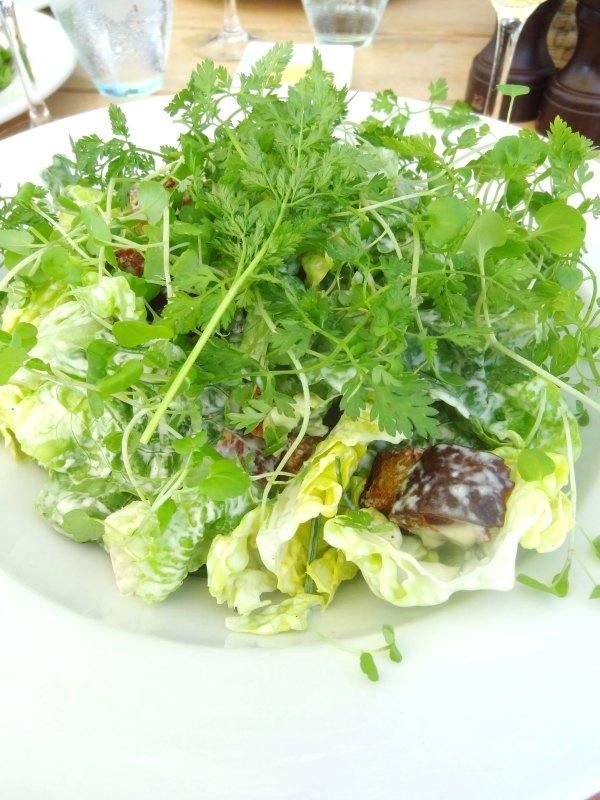 grøn salat skipperhuset