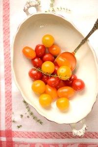 tomater i terrin
