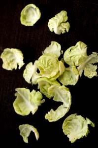 rosenkålsblade 1