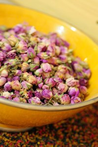 Marokko.tørr.roser