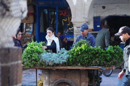 Marokko.myntevogn.1