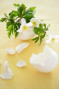 æggeskal.påske