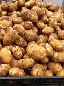 nye kartofler Zagreb