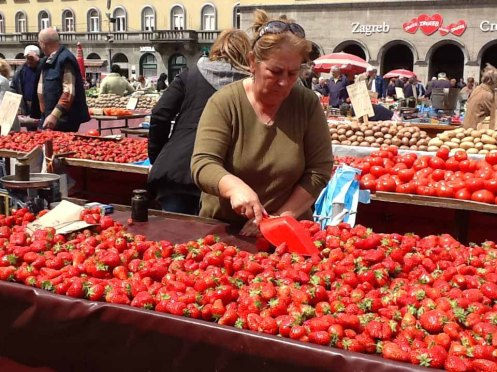 jordbær Zagreb