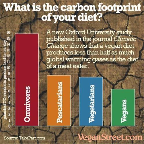 økologisk fodaftryk