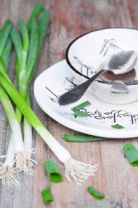 forårsløg.iransk yoghurtsup