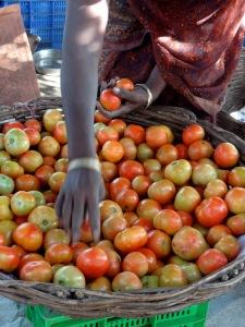 tomater m. hånd