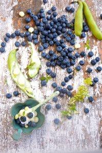gedeost m blåbær.2